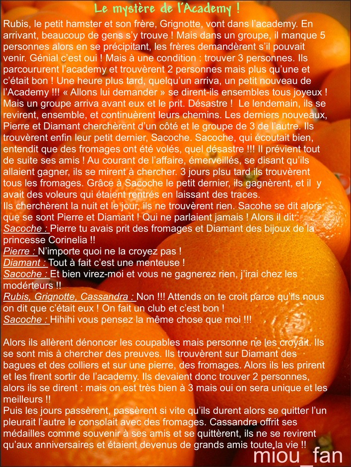 http://www.hamsteracademy.fr/gazette/5/14.jpg