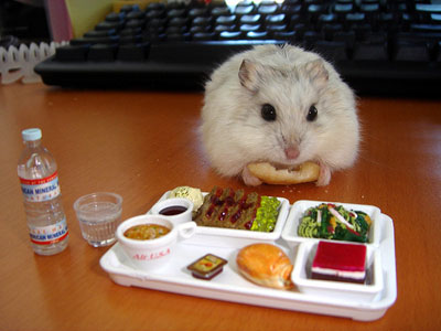 hamster culture Hamster_mange