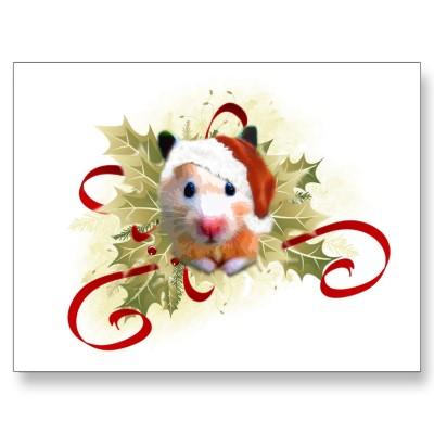 http://www.hamsteracademy.fr/images/joyeuxNoel_fr.jpg